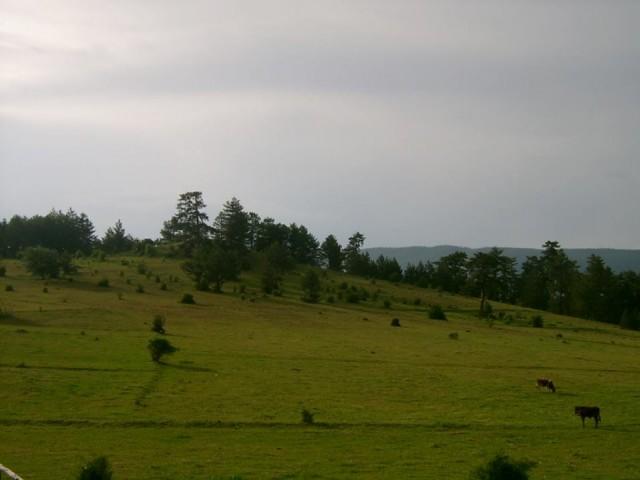 ILGAZ'DA ZAMAN Dünya'nın doğa cennetlerinin başındadır Ilgaz. Karlarla kaplı çam ağaçları, bulutları değen başı ile şiirlere konu olmuştur.
