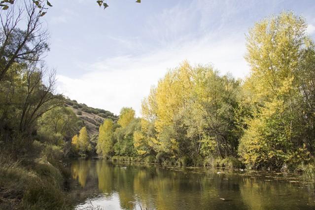 Kızlaryolu barajı tamamlandığında sular altında kalacak Köpürlü köyünden başlayan yürüyüşte yaklaşık 12 kilometre mesafe kat edildi.
