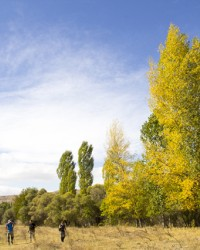Sonbahar da Devres Vadisi renk cümbüşü