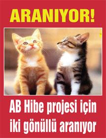AB Hibe projesi için gönüllü aranıyor