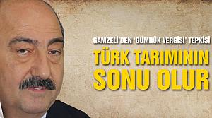 Gamzeli uyardı, Gümrük politikası Türk tarımının sonu olur