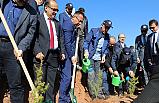 Çankırı'da 205 bin Fidan toprakla buluştu