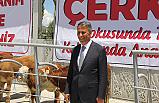 Sopacı: Bölge hayvancılığın kalbi Çerkeş'te atıyor!