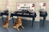 Çankırı'da uyuşturucu operasyonunda 3 tutuklama!