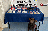 Jandarma'dan uyuşturucu tacirlerine eş zamanlı operasyon!