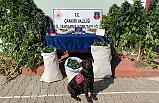 Çankırı'da bir evde 13 kilo kubar esrar yakalandı!