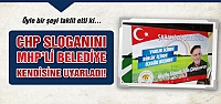 CHP sloganını MHP'li Belediye kedisine uyarladı!