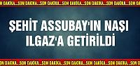 Şehit Assubay'ın naaşı Ilgaz'a getirildi!