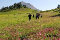 15 Temmuz Şehitler ve Milli İrade Tırmanışı gerçekleştirildi
