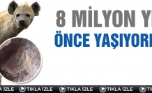 Çankırı'da 8 Milyon Yıl Önce Yaşıyordu