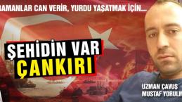 Şehit Piyade Uzman Çavuş Mustafa Yorulmaz