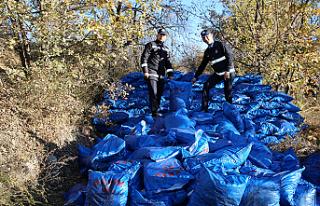 Çankırı'da Yaklaşık 200 Ton Kaçak Kömür...