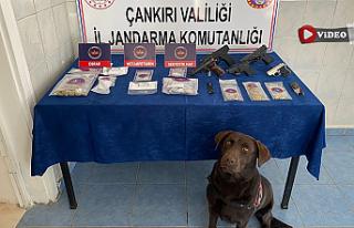 Jandarma'dan uyuşturucu tacirlerine eş zamanlı...