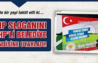 CHP sloganını MHP'li Belediye kedisine uyarladı!...