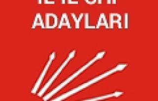 CHP'nin İl İl Kesinleşmiş Aday Listesi