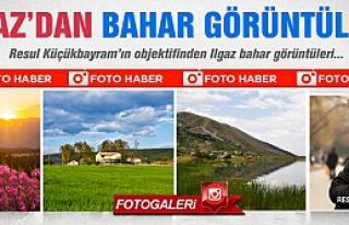 Ilgaz'dan bahar görüntüleri! FOTO HABER