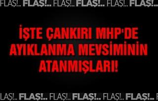 İşte Çankırı MHP'de ayıklanma mevsiminin atanmışları!