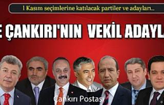 İşte Çankırı'da seçimlere katılan adaylar ve...