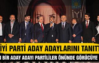 İyi Parti Çankırı'da aday adaylarını tanıttı
