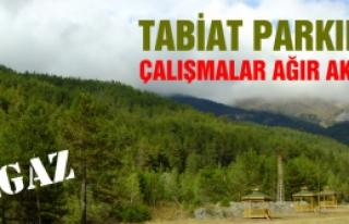 TABİAT PARKI ÇALIŞMALARI AĞIR AKSAK!..