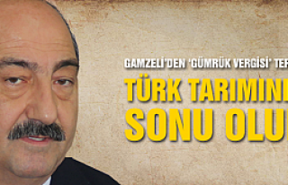 Gamzeli uyardı, Gümrük politikası Türk tarımının...