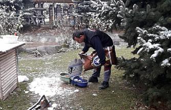 Çankırı'da Sokak Hayvanları İçin Kış Hazırlığı