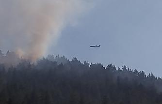Çankırı'da korkutan orman yangını! Ciğerlerimiz yanıyor....