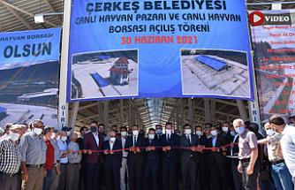 Bölgenin en büyük hayvan pazarı Çerkeş'te hizmete girdi