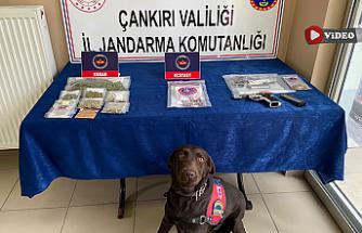 Çankırı merkezli uyuşturucu operasyonu! 13 kişi tutuklandı..