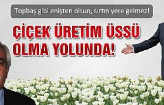 İstanbul'un çiçekleri Atkaracalar'dan gidecek!
