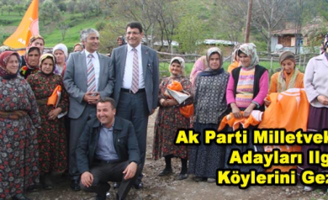 Ak Parti Milletvekili Adayları Ilgaz Köylerini Gezdi