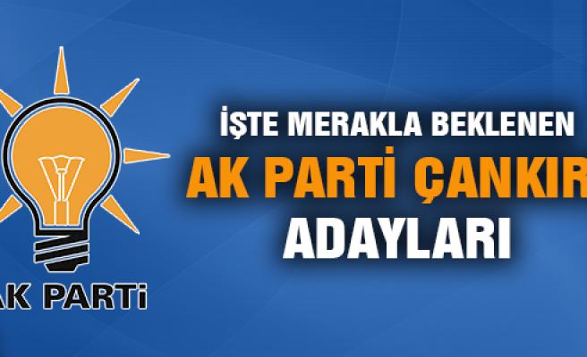 İşte AK Parti  Çankırı milletvekili aday listesi!