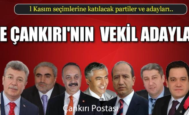 İşte Çankırı'da seçimlere katılan adaylar ve partiler...