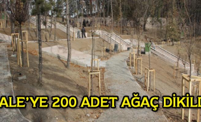 Kaleye 200 adet ağaç dikildi