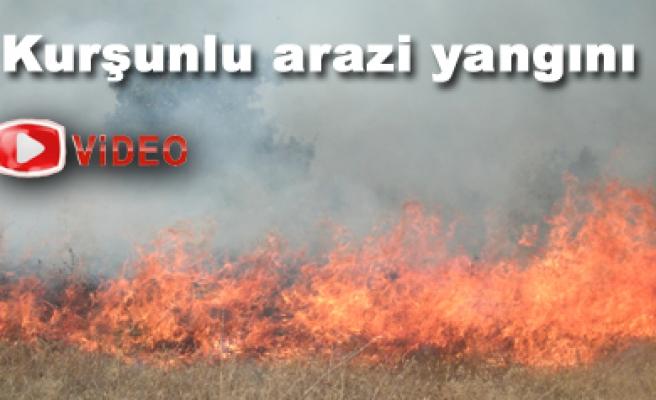 Kurşunlu da 100 ektar arazi yandı
