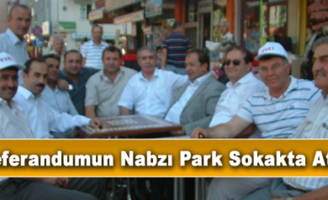 Referandum sandığı Park sokağa kuruldu!