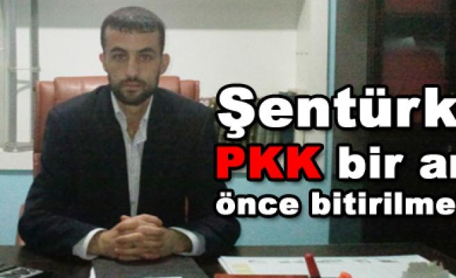 Şentürk; PKK bir an önce bitirilmeli