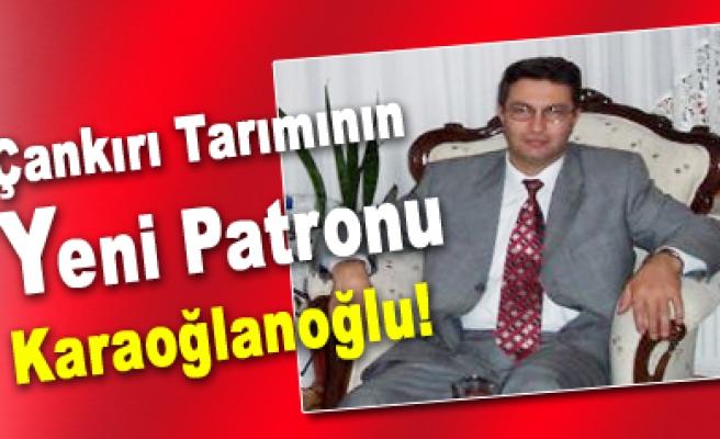 Çankırı Tarım İl Müdürlüğüne Metin Karaoğlanoğlu getirildi