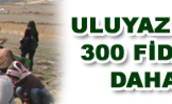 ULUYAZI'YA 300 FİDAN DAHA