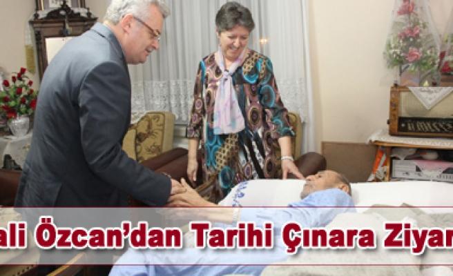 Vali Özcan dan Tarihi Çınara Ziyaret