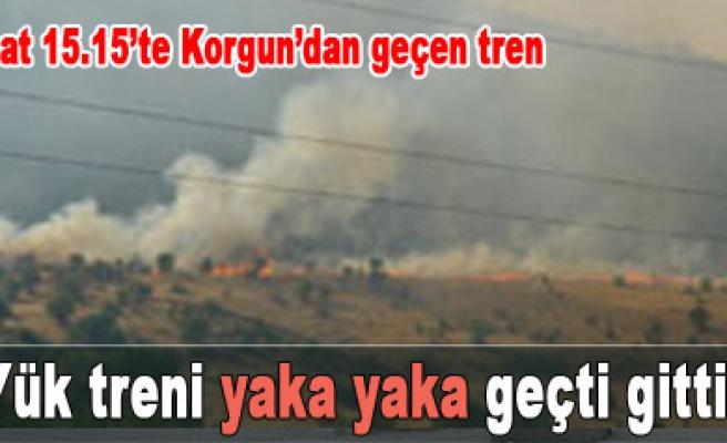 Absarı, Korgun, Buay ve Kayıçivi köylerinde yangın...