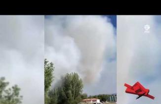 Eldivan'da kavaklık alanda yangın
